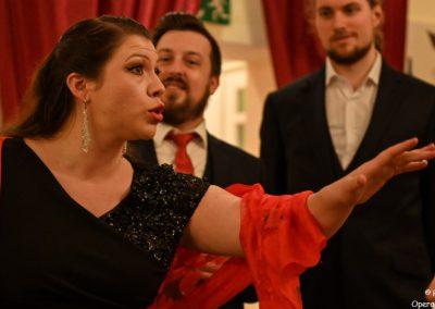 Opera et Cetera Tribute Alexander Scherer (6)